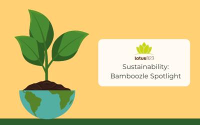 Sustainability: Bamboozle Spotlight